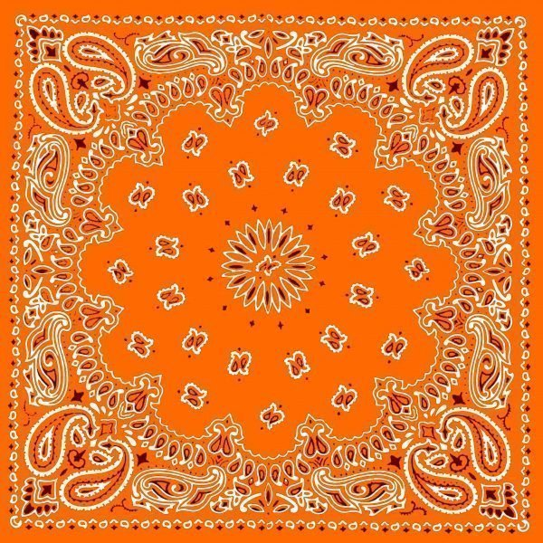 Orange Bandana Scarf at BandanaFever.com