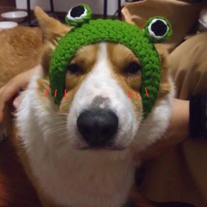 Frog Design Custom Pet Cap Green Corgi by BandanaFever.com