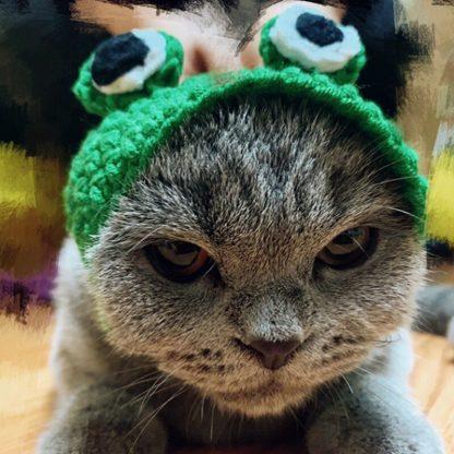 Frog Design Custom Pet Cap Green Angry Cat by BandanaFever.com