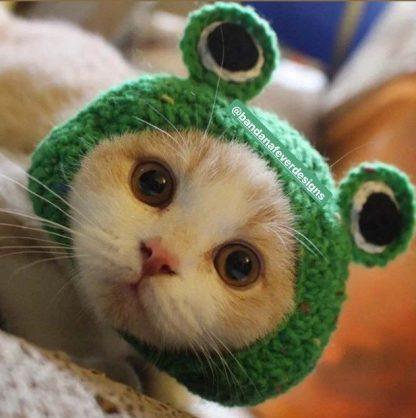 Bandana Fever Frog Design Custom Pet Cap Green at BandanaFever.com