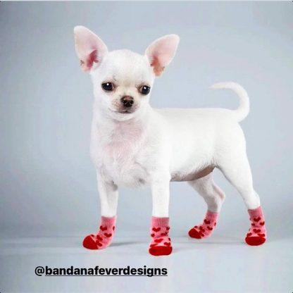 Bandana Fever Hearts Bears Custom Dog Socks Cat Socks at BandanaFever.com