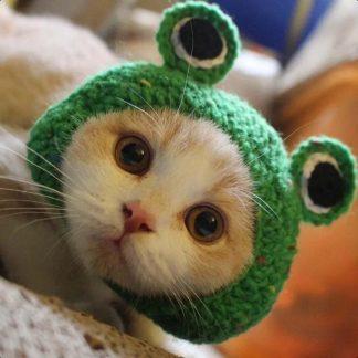 Frog Design Custom Dog Cap Cat Cap Green by BandanaFever.com