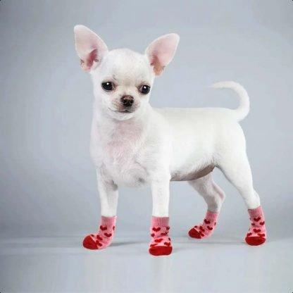 Hearts Bears Custom Dog Socks Cat Socks by BandanaFever.com